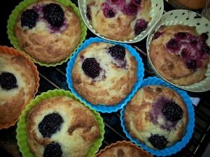 muffins_kokosmjol_mejerifri